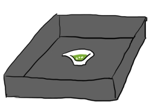 rice porrige