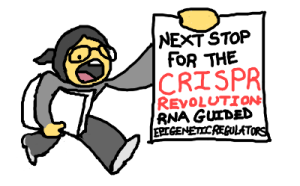 Next stop for the CRISPR revolution: RNA guided epigenetic regulators.